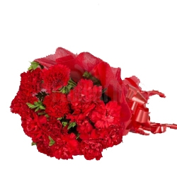 Deep-set Red Carnations