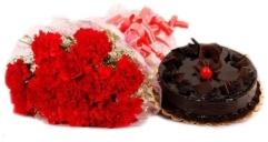 Carnation Hug n Truffle Fun