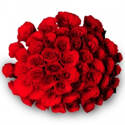 Say It With Flowers 40 Red Roses