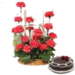 Carnation & Cake