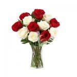 12 Red & White Roses