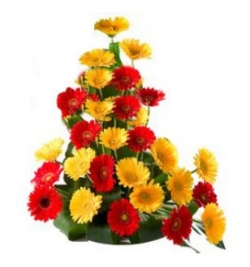 30 Red and Yellow Colour Gerberas Basket