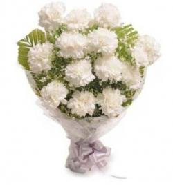 Good Luck White Carnation
