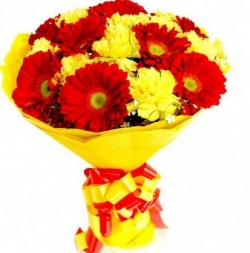 15 Red And Yellow Gerbera