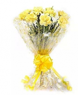 10 Lively Yellow Carnations