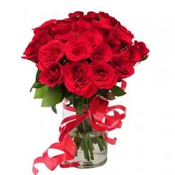 24 Roses Delight