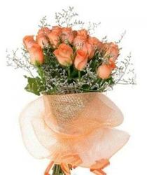 15 Orange Delight Roses