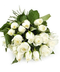 24 White Roses Purity of heart