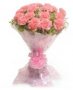 Pink Gratitude