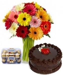 Brilliant Colors 20 Gerberas 1/2 Kg Chocolate Cake & 16 Pcs Ferrero Rocher Box