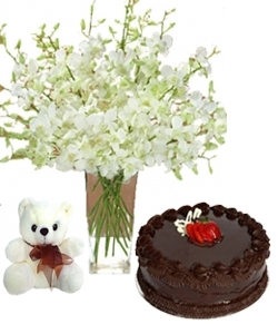 Purity 20 Orchids 1/2 Kg Chocolate Cake & 6 Inch Teddy Bear