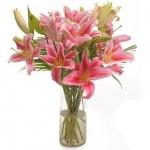 Attractive Pink Arrangement