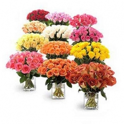 Vibrant Mix Color 200 Roses