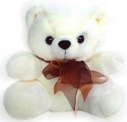 10 Inch Teddy
