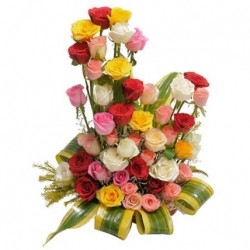 Beauty 50 Roses