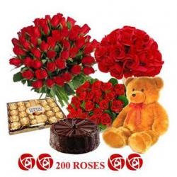 200 Roses 5 Star Cake Ferrero Rocher & Teddy