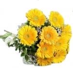 10 Yellow Gerbera Bunch