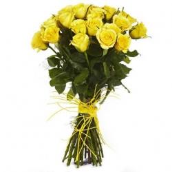 30 Yellow Roses Daffodil