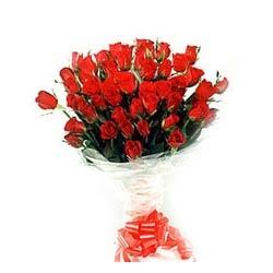 50 Roses Feelings