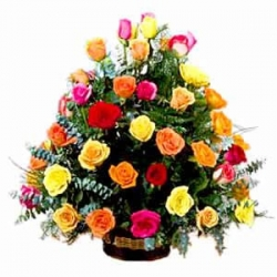 30 multicolour Rose Basket