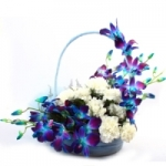 6 Blue Orchids 6 White Carnations basket