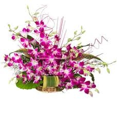 20 Orchids Stems Basket Arrangement