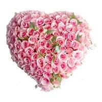 100 Pink Roses Heartshape Flowers