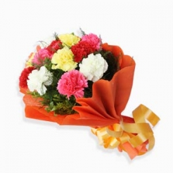 10 Mix Color Carnations
