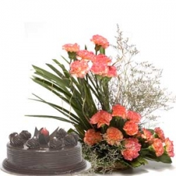 Best Wishes  20 Carnations with 1/2 kg chocolate cake.